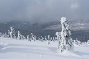 Ozáření sněhem