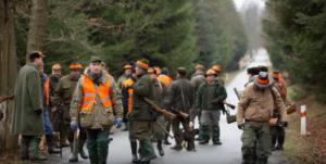 Společné lovy – jejich druhy, průběh i podmínky.