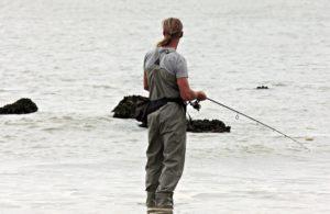Feeder – moderní rybářská technika