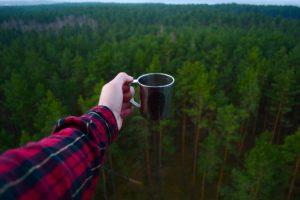 Jak si i v zimě připravit čaj z lesních surovin? Poradíme Vám!